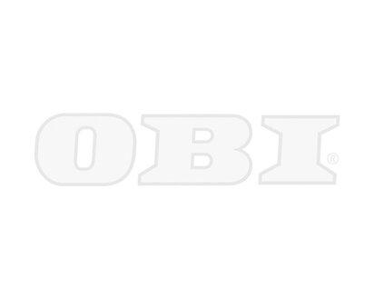 Aeg Led Deckenleuchte Tonic Mit Lautsprecher Eek A Kaufen Bei Obi