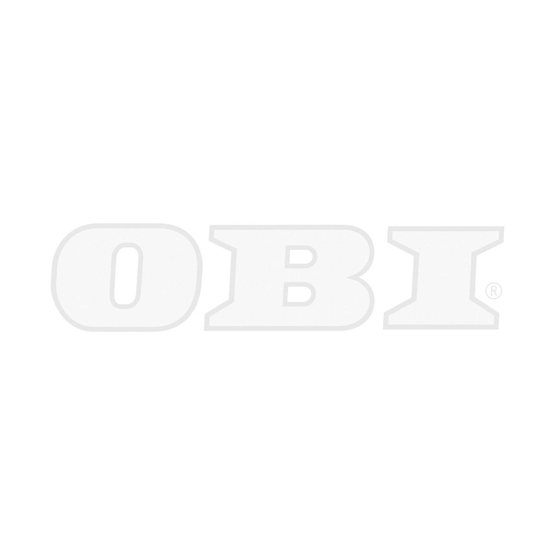 Favorit Bondex Holzlasur für Aussen Farblos 750 ml kaufen bei OBI SH43