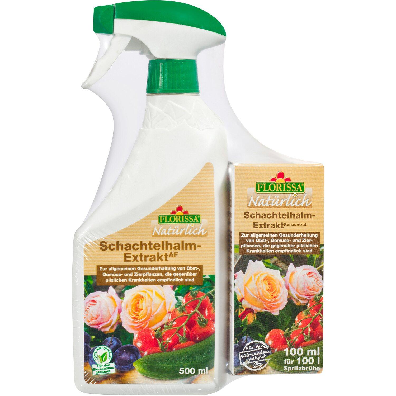 Florissa Natürlich Schachtelhalm-Extrakt AF + onpack 500 ml