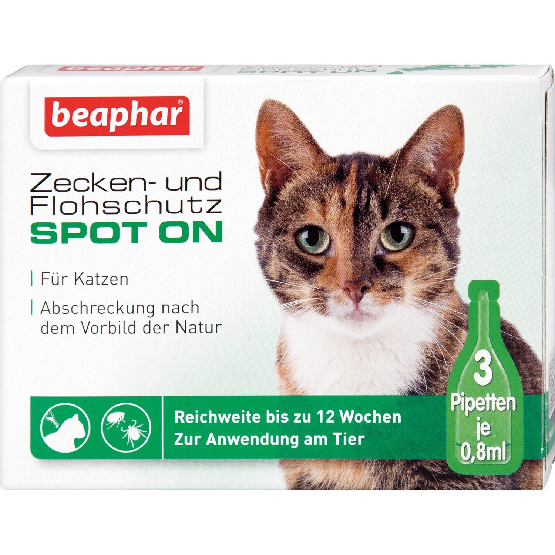 Beaphar Zecken- und Flohschutz Spot on für Katz...