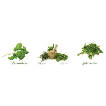 Eurographics Wandtattoo 3-teilig Different Herbs