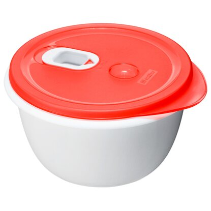 Rotho Mikrowellenbehälter Micro Clever Porcelain-Rot 1,6 l