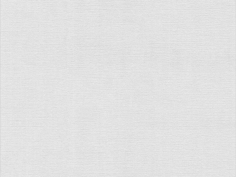 meistervlies protect vliestapete flaechenputz kaufen bei obi