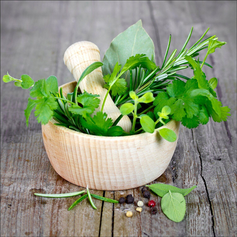 glas art green basil in bowl i 50 cm x 50 cm kaufen bei obi. Black Bedroom Furniture Sets. Home Design Ideas