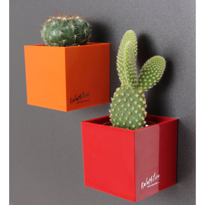 kalamitica kunststoffgef mit magnet w rfel 9 cm x 9 cm kupferbraun kaufen bei obi. Black Bedroom Furniture Sets. Home Design Ideas