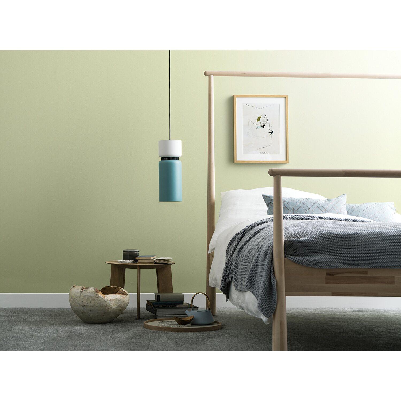 Schöner Wohnen Wandfarbe Naturell Birkengrün Matt 2,5 L