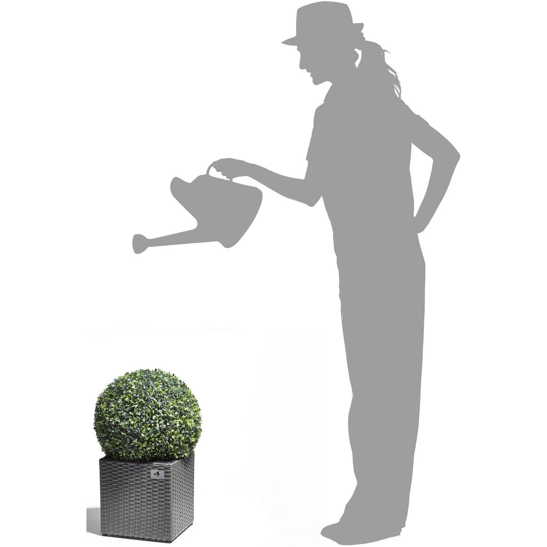 Gartenfreude Pflanzkübel Polyrattan 28 cm x 28 cm Grau kaufen bei OBI