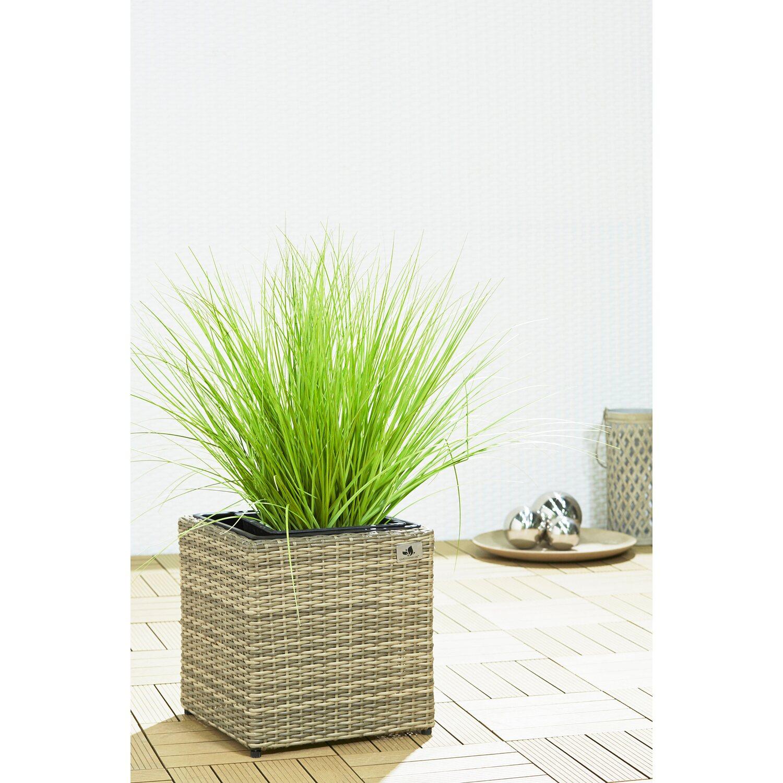 Gartenfreude Pflanzkübel Polyrattan 36 cm x 36 cm Naturfarben kaufen ...