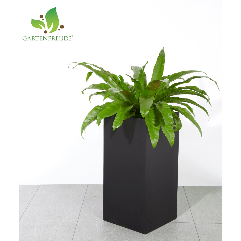 gartenfreude pflanzk bel fiberglas 30 cm x 30 cm schwarz. Black Bedroom Furniture Sets. Home Design Ideas