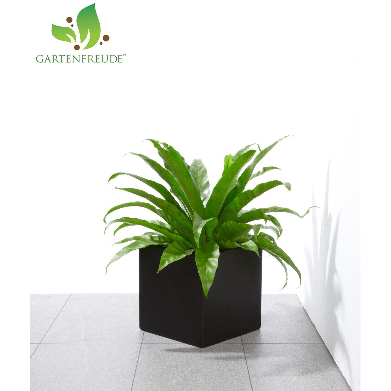 gartenfreude pflanzk bel fiberglas 30 cm x 30 cm anthrazit. Black Bedroom Furniture Sets. Home Design Ideas
