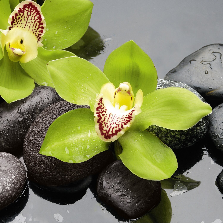 eurographics deco glass green beauties 20 cm x 20 cm. Black Bedroom Furniture Sets. Home Design Ideas