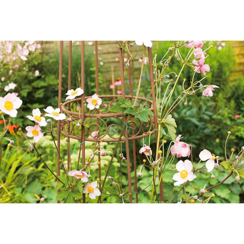 OBI Pflanzen-Bindeset 71-tlg. kaufen bei OBI