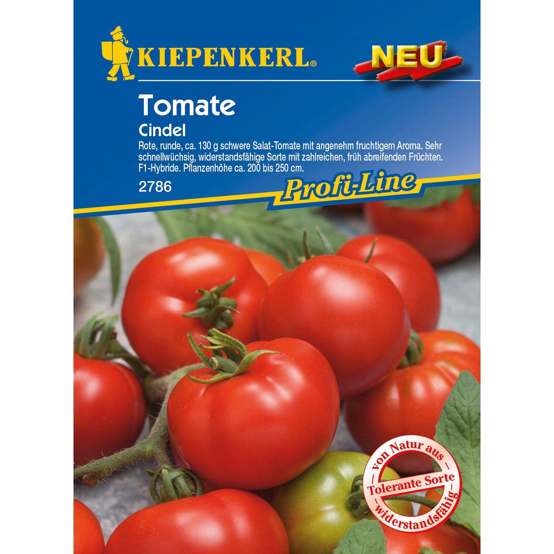 kiepenkerl tomaten cindel f1 hybride kaufen bei obi. Black Bedroom Furniture Sets. Home Design Ideas
