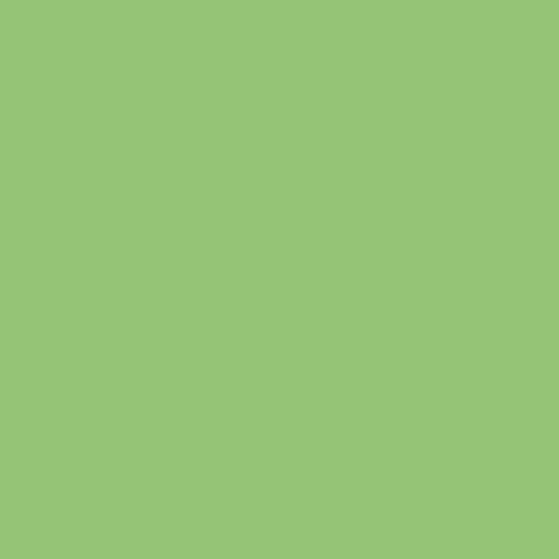 OBI  2in1 Buntlack Kiwi glänzend 750 ml