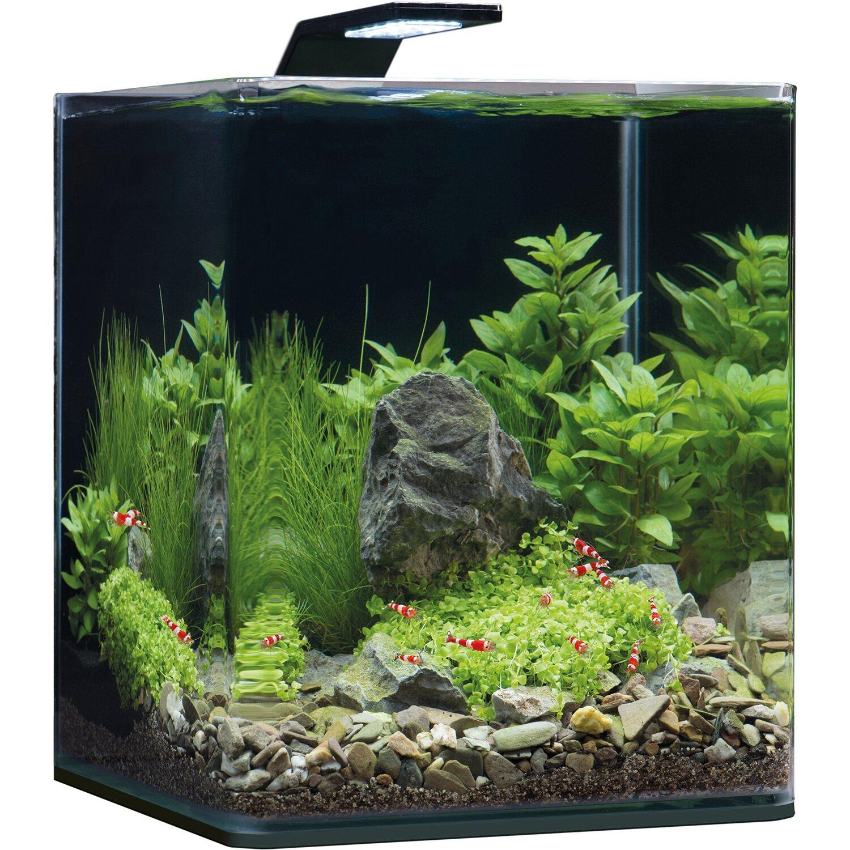 ламинат нано аквариум картинки хочу попробовать