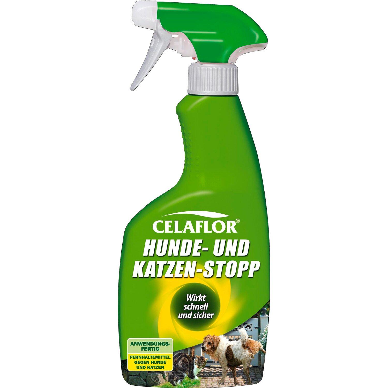 Celaflor Hunde Und Katzen Stopp Spray 500 Ml Kaufen Bei Obi