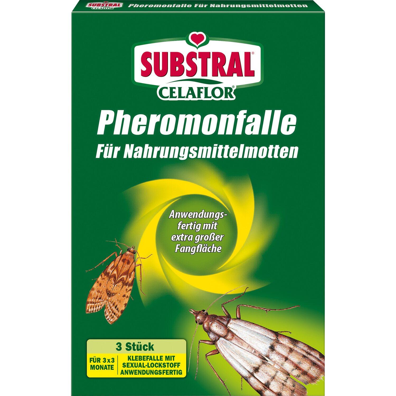 Celaflor Pheromonfalle für Nahrungsmittel Motte