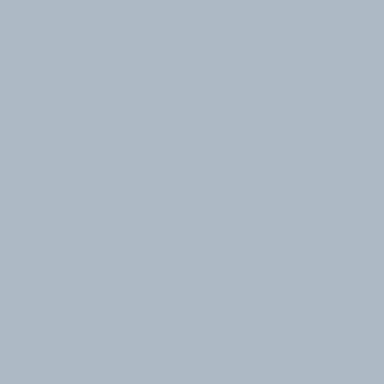 Farbkombinationen Blau Grau: Alpina Feine Farben No. 16 Elegantes Blaugrau Edelmatt 2,5