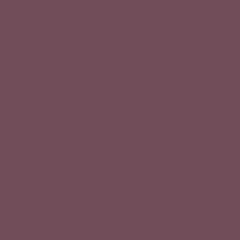 Alpina feine farben no 17 herrschaftliches purpur - Wandfarbe purpur ...