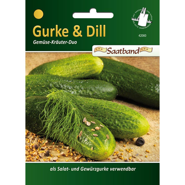 Gurke & Dill