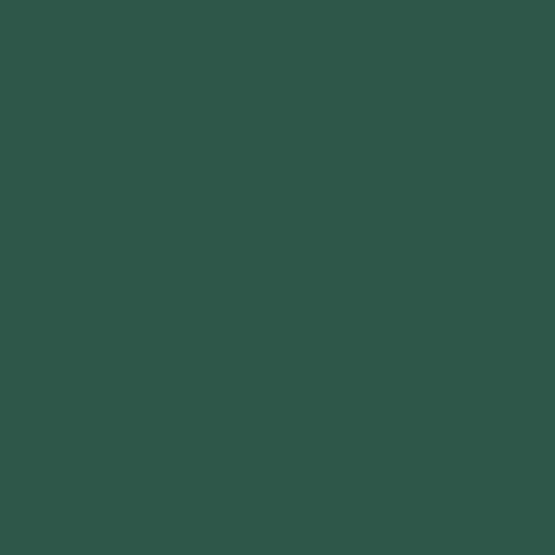 obi wetterschutzfarbe moosgr n seidenmatt 750 ml kaufen bei obi. Black Bedroom Furniture Sets. Home Design Ideas