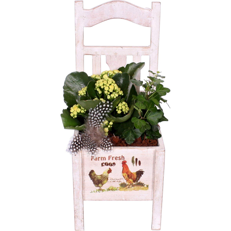 Bepflanzter deko stuhl vintage wei mit dekoprint kaufen - Bepflanzter stuhl ...