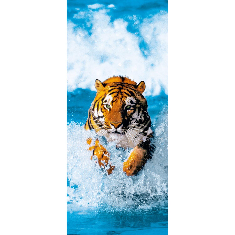Poster Bengal Tiger