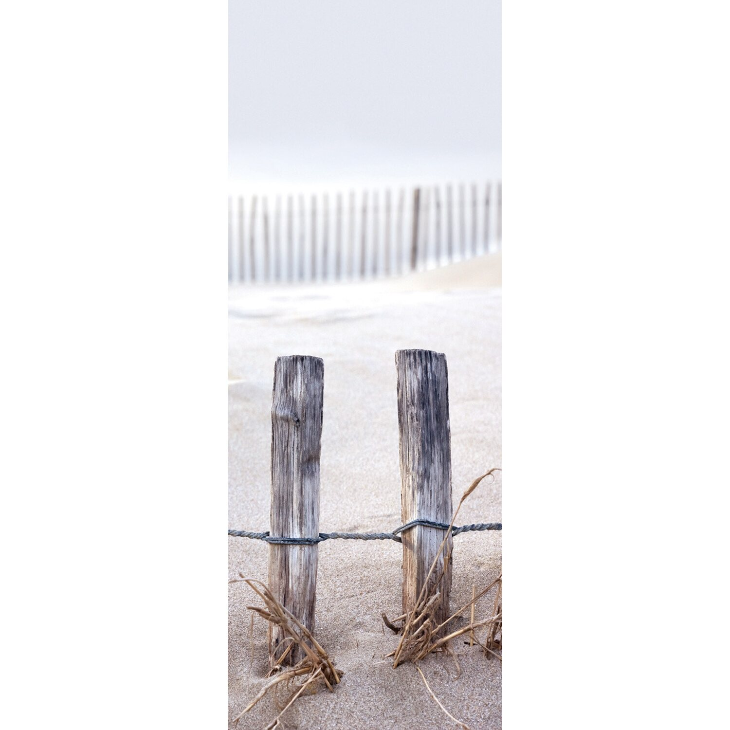 Eurographics  Deco Glass Fence In The Dunes 80 cm x 30 cm
