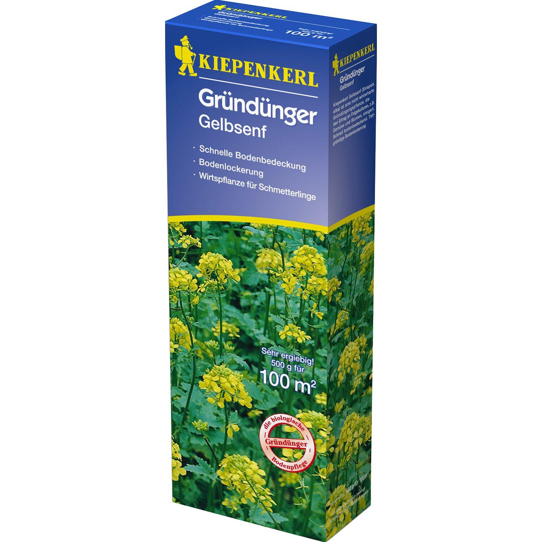 Kiepenkerl Gründünger Gelbsenf 500 g