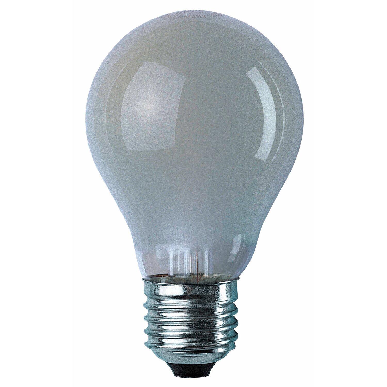 Osram  Speziallampe EEK: E Glühlampenform E27 / 100 W (1000 lm) Warmweiß