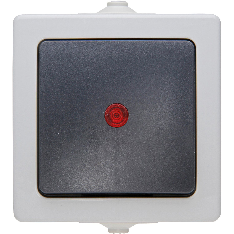 Kopp Aufputz-Feuchtraum Kontrollschalter IP 44 grau