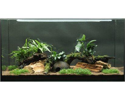 Dennerle Aquariumpflanzen Set Deko 80 Cm 120 Cm Aquarium 12 Deko Pflanzen Kaufen Bei Obi