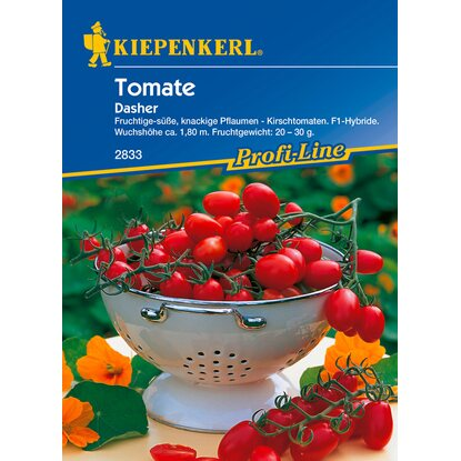 Tomaten Cherry Dasher F1