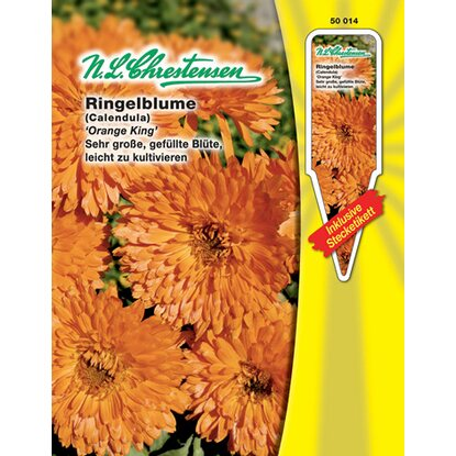 Ringelblume Orange King
