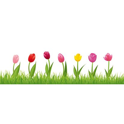Eurographics Fenstersticker antistatisch Happy Tulips