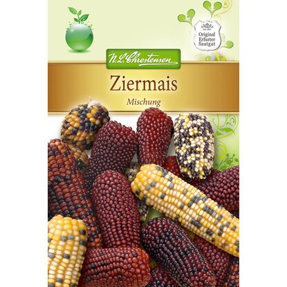 Ziermais Mix