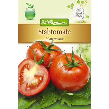Stabtomate Moneymaker