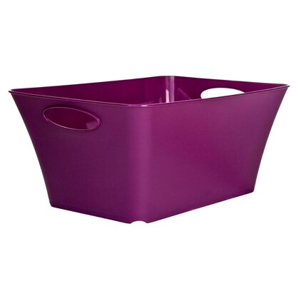 Rotho Living Box Violett 24 l