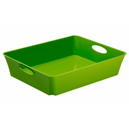 Rotho Living Box Grün 2,5 l