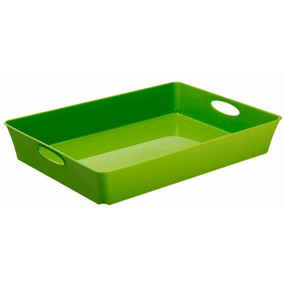 Rotho Living Box Grün 4,5 l