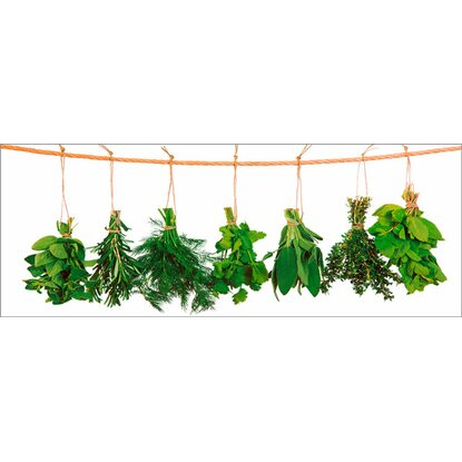 Eurographics Deco Glass Hanging Herbs 30 cm x 80 cm