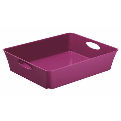 Rotho Living Box Violett 2,5 l