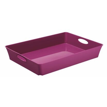 Rotho Living Box Violett 4,5 l