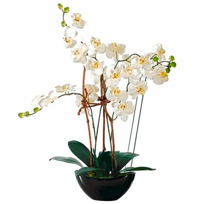 Best of home Kunstpflanze Orchideentopf Modern 70 cm