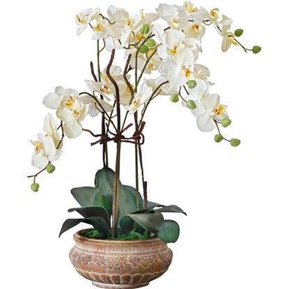 Best of home Kunstpflanze Orchideentopf Antik 67 cm