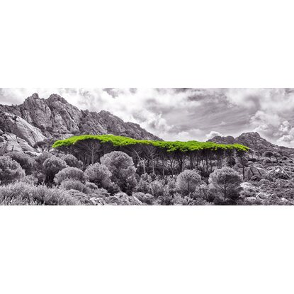 Eurographics Glasbild Green Roof 125 cm x 50 cm