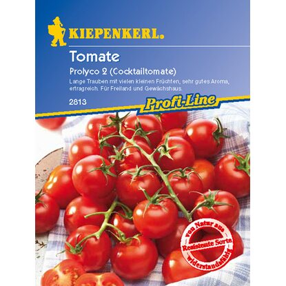 Kiepenkerl Cocktail Tomaten Prolyco