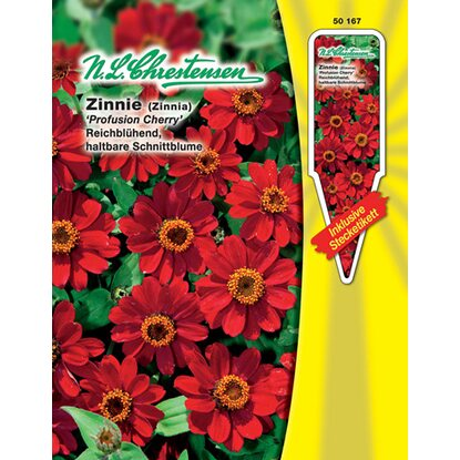 Zinnie Profusion Cherry