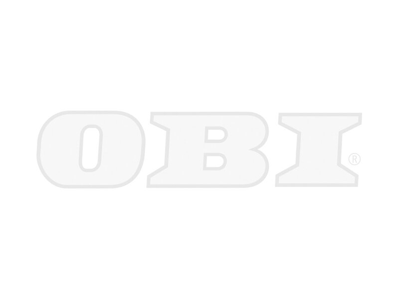 Hängepflanzen online kaufen bei OBI