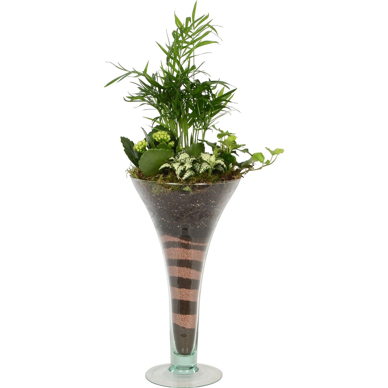 arrangement bl h und gr npflanzen in trompetenvase topf ca 16 cm kaufen bei obi. Black Bedroom Furniture Sets. Home Design Ideas